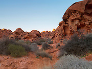 Red rock sandstone formations, red sand and desert vegetation, Mouses Tank Canyon, Valley of Fire State Park, Mojave Desert, Nevada, USA. Late afternoon sunlight in the golden hour before sunset lends a golden fiery glow to the peaks of some of the boulders.