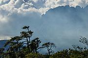 Auyantepuy, Canaima, Venezuela. ©Henry GonzalezI/istmophoto