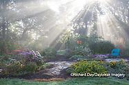 63821-23718 Sun rays in fog in flower garden, Marion Co., IL
