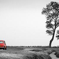 Rode mini