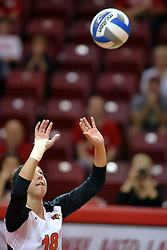 30 August 2011: Kaitlyn Early sets the ball during an NCAA volleyball match between the Cougars of Southern Illinois Edwardsville and the Illinois State Redbirds at Redbird Arena in Normal Illinois.