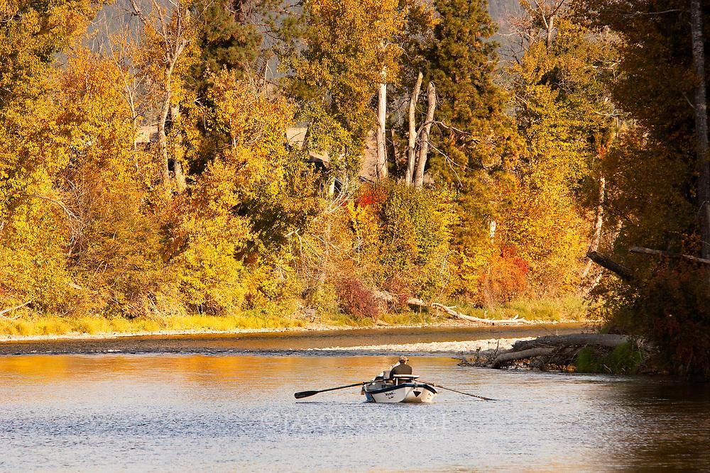Fly Fishing Bitterroot River, Montana.