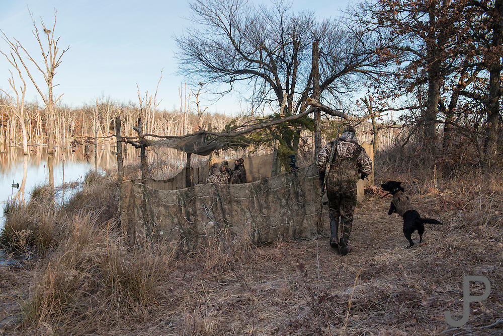 Tony Troxell and his 2 year old black lab Ellie walking back to the blind after retrieving a downed duck while hunting on a private watershed lake in Shamrock, Oklahoma