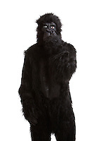 Young man in a gorilla costume picking his nose against white background
