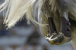 Tail<br /> © Hippo Foto - Christophe Bricot