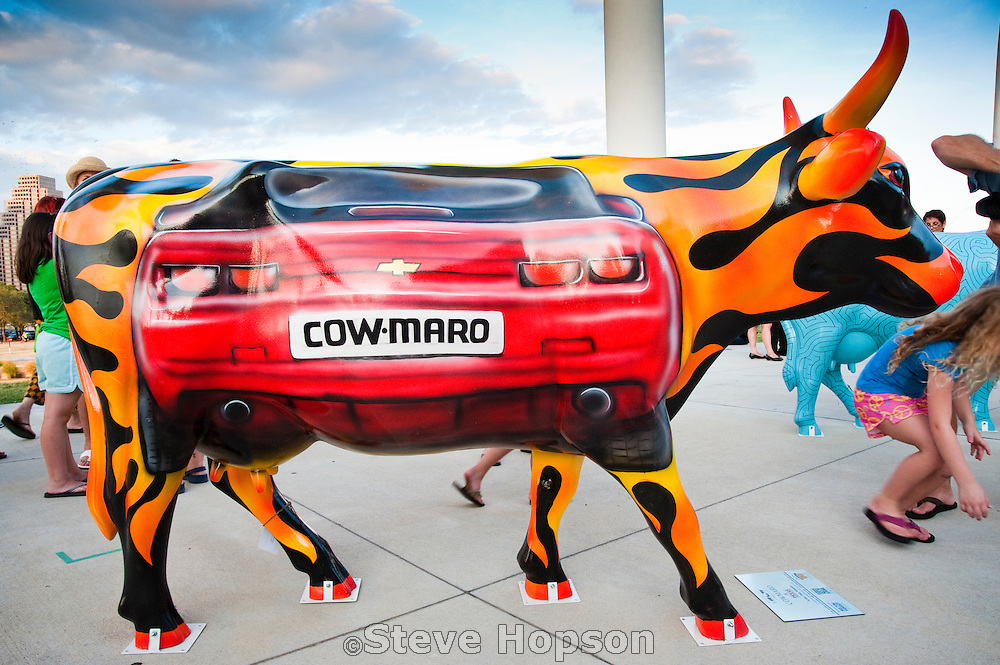 COW-MARO, a piece in CowParade, Austin, Texas, July 27, 2010.  CowParade is considered to be the largest and most recognized public art event in the world. Starting July 2011, about 100 cows painted by local artists went on display throughout Austin.