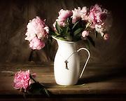 Pink Peonies in white metal pitcher