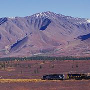 Train Crossing Valley With Matanuska Mountains In back, Broad Pass, Alaska;USA