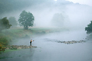 Fly fishing, Nore River, County Kilkenny, Ireland
