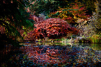 A tranquil place to take in Autumn's splendor.