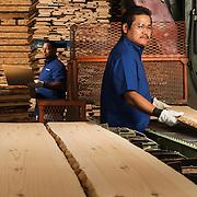 15044, Excalibur, Rebranding, Excalibur, Plant, 1374, Metal, Planer, production, Manufacturing, Portrait, Raw, Wood, Rough