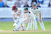 Ryan Davies of Somerset batting during the Specsavers County Champ Div 1 match between Somerset County Cricket Club and Nottinghamshire County Cricket Club at the Cooper Associates County Ground, Taunton, United Kingdom on 22 September 2016. Photo by Graham Hunt.