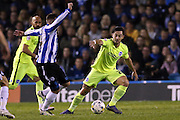 Richie Towell in action during the Sky Bet Championship Play Off First Leg match between Sheffield Wednesday and Brighton and Hove Albion at Hillsborough, Sheffield, England on 13 May 2016.