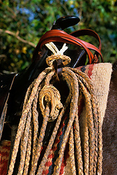close up of rope hanging on a saddle