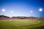 University of Arkansas Razorback 2006 Baseball team ..©Wesley Hitt.All Rights Reserved.501-258-0920.