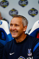 Picture by David Horn/Focus Images Ltd +44 7545 970036<br /> 26/10/2013<br /> Keith Millen , Caretaker Manager of Crystal Palace during the Barclays Premier League match at Selhurst Park, London.