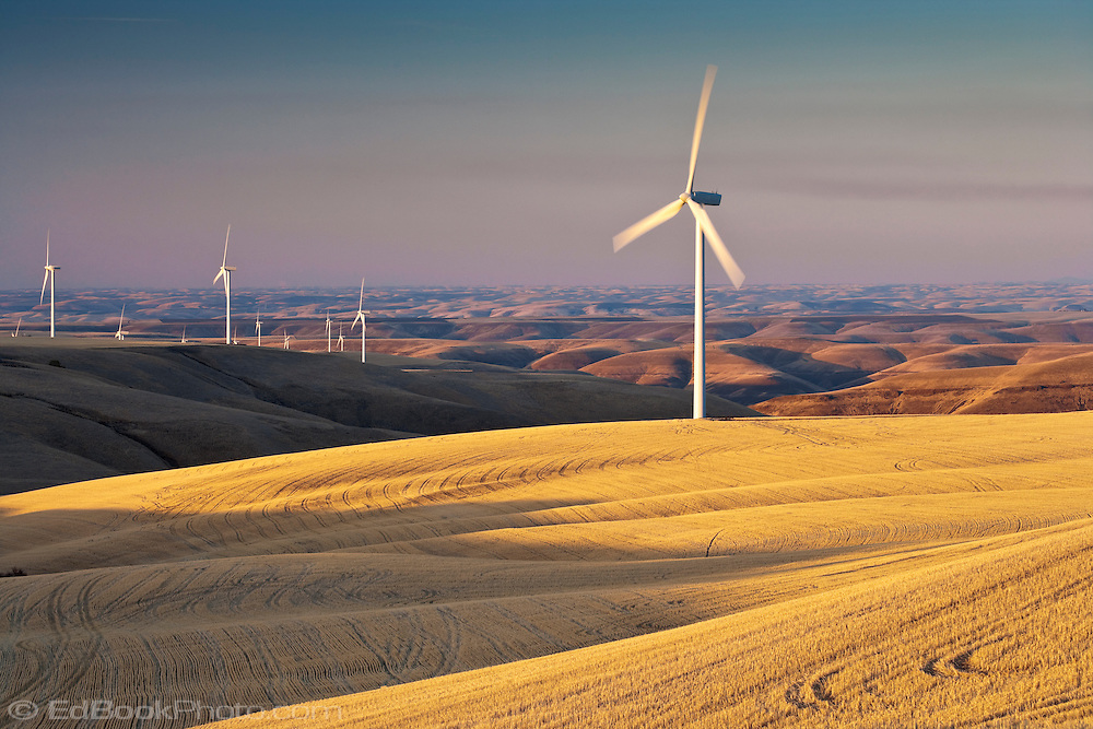 Electric Generating Windmills In The Palouse Region Of