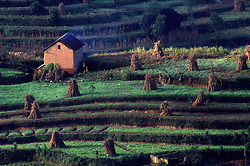 KATHMANDU, NEPAL - OCTOBER 1992 - <br />