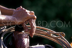 close up of hands resting on a saddle