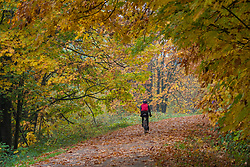 United States, Washington, Snohomish, man bicycling on path in fall.