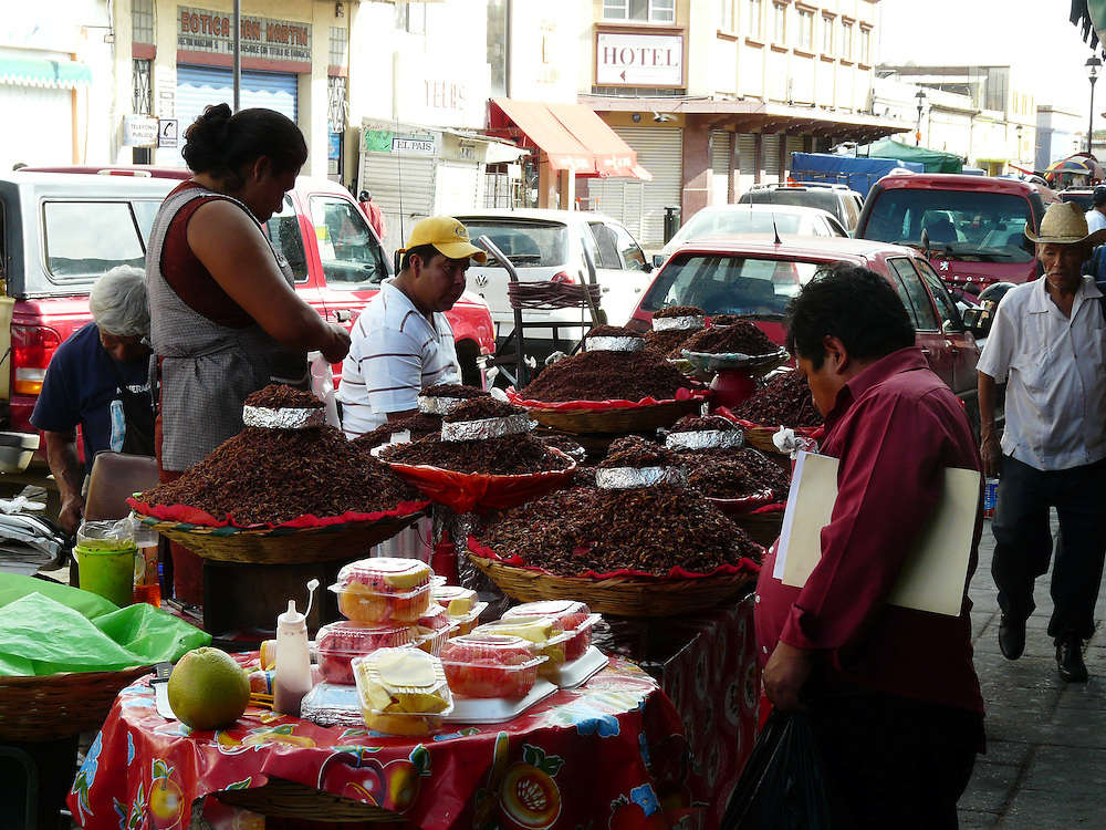 EN&gt; A bypaser making up his mind for a portion of crickets at the market in Oaxaca, Mexico | <br /> SP&gt; Un comensal se decide por unos chapulines en el mercado de Oaxaca, Mexico