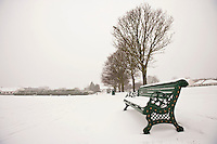 Park bench and park covered in snow