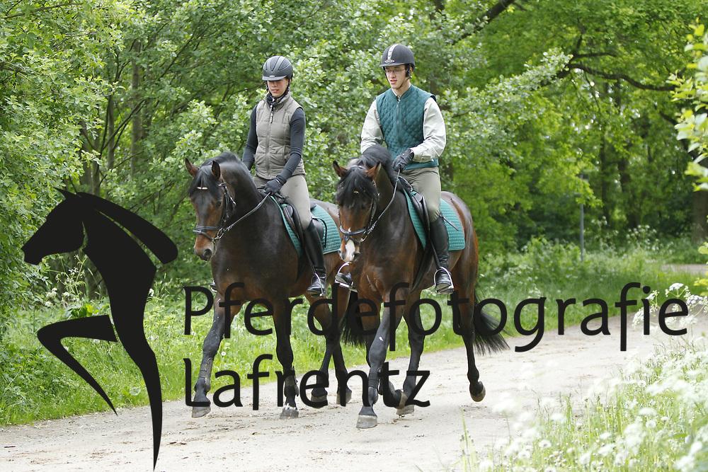 Führpferd im Gelände<br /> Redefin - erstes Anreiten von jungen Pferden 2010<br /> www.sportfotos-lafrentz.de/Stefan Lafrentz