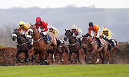 Leighton Aspell (Red Silks) riding McKenzie's Friend leads the field  before winning the J H Builders National Hunt Novices Hurdle at Plumpton Racecourse - 13 Dec 2015