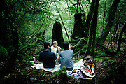 """Yakushima, June 2011 - Tourists stopped for a lunch in """"Mononoke forest"""", which inspired Miyazaki for its anime movie """"Princess Mononoke""""..The forest is also called """"moss forest""""."""