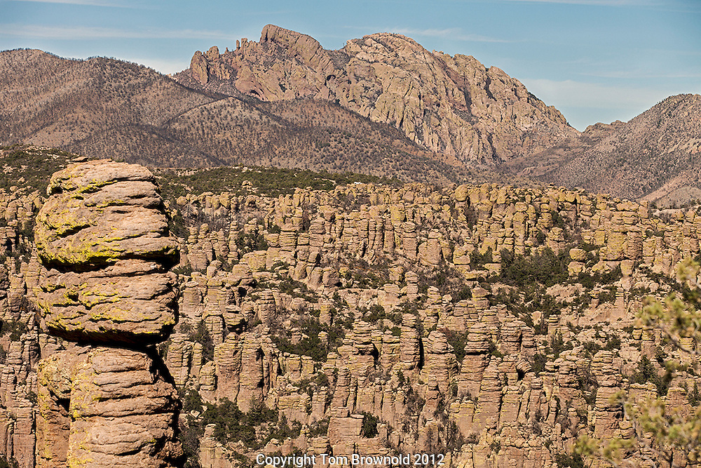 Chiricahua mountain Hoodoos made of volcanic ash which were <br /> fused into welded rhyolite tuff