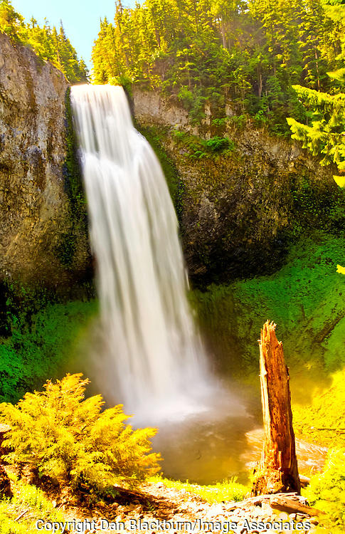 Salt Creek Falls in Full Flow in Oregon