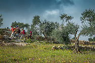 Palestine, March 2015. Hikers meet Palestinian shepherds on the Trail between Awarta and Duma. The Abraham Path is a long-distance walking trail across the Middle East which connects the sites visited by the patriarch Abraham. The trail passes through sites of Abrahamic history, varied landscapes, and a myriad of communities of different faiths and cultures, which reflect the rich diversity of the Middle East. Photo by Frits Meyst / MeystPhoto.com for AbrahamPath.org