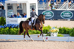 GRAVES Laura (USA), Verdades<br /> Tryon - FEI World Equestrian Games™ 2018<br /> Grand Prix de Dressage Teamwertung und Einzelqualifikation<br /> 13. September 2018<br /> © www.sportfotos-lafrentz.de/Stefan Lafrentz