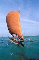 Sri Lanka (Ceylan), Region de l'Ouest, Negombo, Pêcheurs en Catamaran // Sri Lanka, West coast, Negombo, fisher with catamaran boat