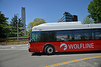 Wolfline bus makes its way around a Hillsborough Street traffic circle by the Memorial Belltower.