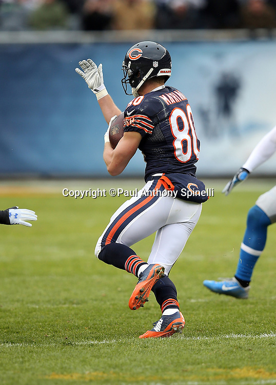 Chicago Bears wide receiver Marc Mariani (80) catches a pass for a gain of 22 yards in the third quarter during the NFL week 17 regular season football game against the Detroit Lions on Sunday, Jan. 3, 2016 in Chicago. The Lions won the game 24-20. (©Paul Anthony Spinelli)
