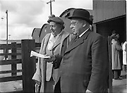 19/09/1952<br /> 09/19/1952<br /> 19 September 1952<br /> Show: Pedigree Dairy Cattle Breeders Council of Ireland Autumn Show and Sale at 30 Prussia Street, Dublin. Capt. J.H. Wilson, President of the Pedigree, Dairy, Cattle, Breeders, Council of Ireland with Mrs Wilson. Cattle Market,