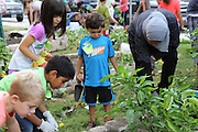 Briargrove Elementary School's Green Apple Day of Service on Saturday, Sept. 27, 2014.
