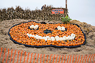 Pumkin Hill, del av aktivitsomr&aring;det hos Bauman Farms, Gervais, Oregon, USA<br /> Foto: Christina Sj&ouml;gren