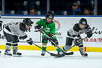 KELOWNA, CANADA - NOVEMBER 25: Mini minor hockey players on November 25, 2017 at Prospera Place in Kelowna, British Columbia, Canada.  (Photo by Marissa Baecker/Shoot the Breeze)  *** Local Caption ***