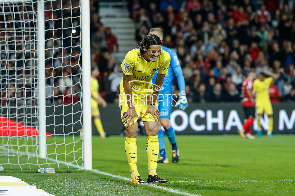 Edinson Roberto Paulo Cavani Gomez (psg) (El Matador) (El Botija) (Florestan), Karl-Johan JOHNSSON (En Avant De Guingamp) during the French championship L1 football match between EA Guingamp v Paris Saint-Germain, on August 13, 2017 at the Roudourou stadium in Guingamp, France - Photo Stephane Allaman / ProSportsImages / DPPI
