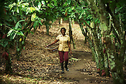 Cocoa farmer Comfort Kumeah poses for a portrait on a cocoa plantation near the town of Nem, Ghana on Thursday August 17, 2007.