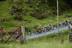 Sara Penton (SWE) in the bunch at Stage 5 of 2019 OVO Women's Tour, a 140 km road race from Llandrindod Wells to Builth Wells, United Kingdom on June 14, 2019. Photo by Sean Robinson/velofocus.com