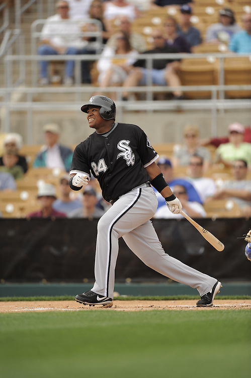 GLENDALE, AZ - MARCH 5:  Dayan Viciedo #24 of the Chicago White Sox bats during the game against the Los Angeles Dodgers on March 5, 2009 at Camelback Ranch in Glendale, Arizona. (Photo by Ron Vesely)