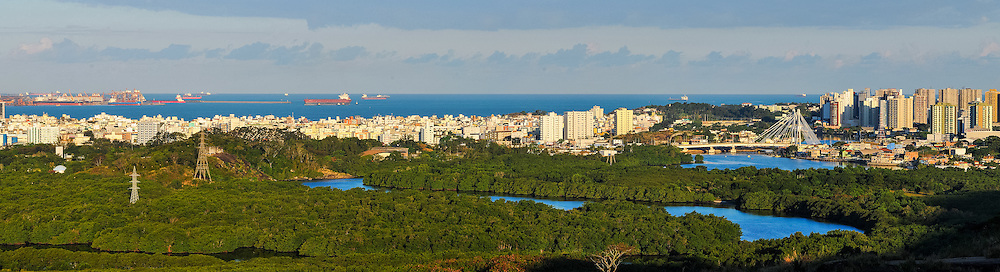 Brasil - Espirito Santo - Vitoria - Vista panoramica do Manguezal da Ufes - Foto: Gabriel Lordello/ Mosaico Imagem