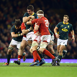 CARDIFF, WALES - NOVEMBER 24: Eben Etzebeth of South Africa holds onto the ball during the Castle Lager Outgoing Tour match between Wales and South Africa at Principality Stadium on November 24, 2018 in Cardiff, Wales. (Photo by Steve Haag/Gallo Images)