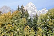 Fall, Autumn, Grand Teton National Park, Jackson, Wyoming