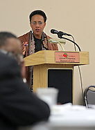 Beth Parker of Ruhl & Ruhl Realtors gives a presentation during a meeting of RED-I at the African American Museum of Iowa in Cedar Rapids on Thursday, December 12, 2013.