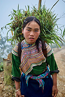 Vietnam. Haut Tonkin. Region de Bac Ha. Village de Ban Pho. Ethnie Hmong fleur. // Vietnam. North Vietnam. Bac Ha area. Ban Pho village. Flower Hmong ethnic group.