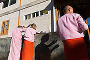 Young Nuns shaving their heads with strong sun and shadow, Padonmar Sari Nunnery, Taunggyi